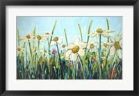 Framed Daisy Do
