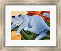 Framed Cats & Pots