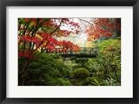 Framed Autumn Leaves On Trees And Footbridge, Japanese Garden