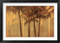 Framed Sunset Palms III