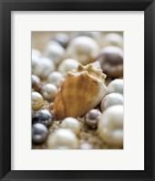 Framed Sea Jewels III
