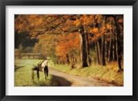 Framed Autumn's Morning Light