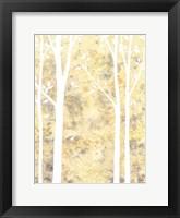 Framed Simple State II