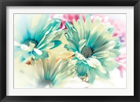Framed Color Full