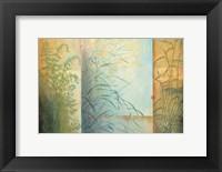Framed Ferns & Grasses