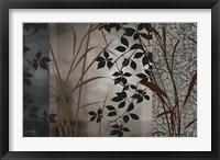 Framed Silver Whispers I