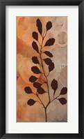 Framed Flora I