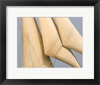 Framed Windward I