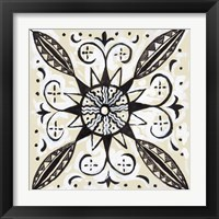 Framed Imaginary Mandala