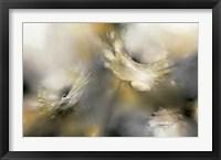 Framed Sorbet Roses