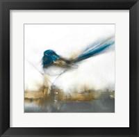 Framed Little Blue II