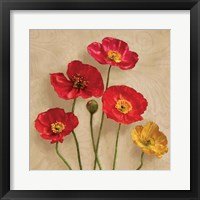 Framed Graceful Spring I