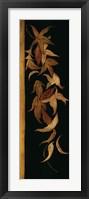 Framed Black Shinwa II