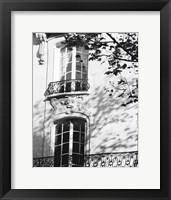 Framed Autumn Shadows I