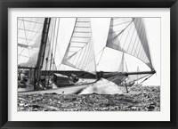 Framed Free Sailing