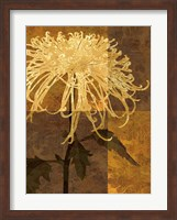 Framed Golden Mums I