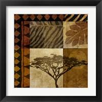 Framed Acacia Sunrise I
