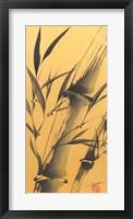 Framed Bamboo's Strength