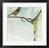 Framed Early Bird