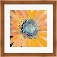 Framed Sunshine Flower IV