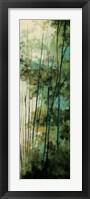 Framed La Senda II