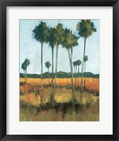 Framed Tall Palms II