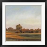 Framed Harvest Fields