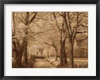 Framed Smokies Road