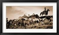 Framed Gathering the Herd