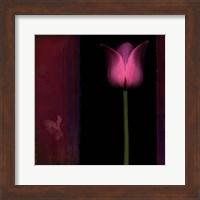 Framed Red Tulip I