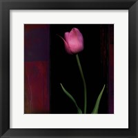 Framed Red Tulip II