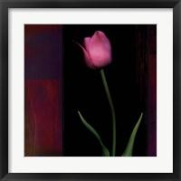 Framed Red Tulip II