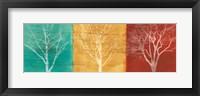 Framed Fallen Leaves