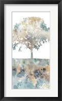Framed Water Tree I