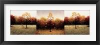 Framed Trois Scenes