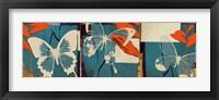 Framed Butterflies Viola