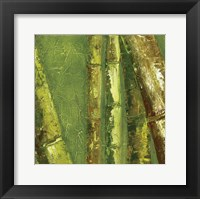 Framed Bamboo Columbia I