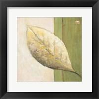 Framed Leaf Impression - Olive