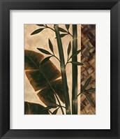 Framed Temperate Flora