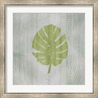 Framed Palm Leaf
