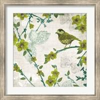 Framed Birds and Butterflies II