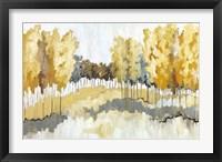 Framed Grasslands