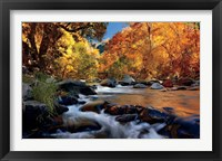 Framed River Of Gold