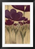 Framed Summer Bloom II