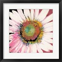 Framed Sunshine Flower I