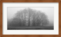 Framed Gathering Trees