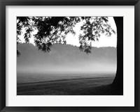 Framed Fog in the Park I