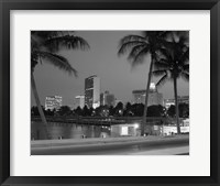 Framed Night View Skyline With Palm Trees Miami Florida