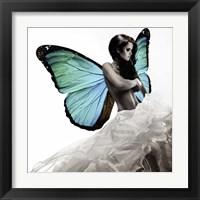 Framed Winged Beauty #1