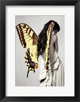 Framed Winged Beauty #3